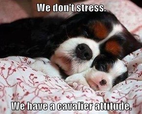 We don't stress.  We have a cavalier attitude.