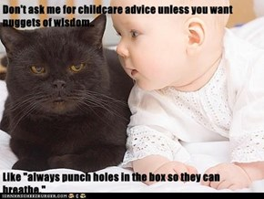 "Don't ask me for childcare advice unless you want nuggets of wisdom..  Like ""always punch holes in the box so they can breathe."""
