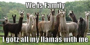 We is Family  I gotz all my llamas with me