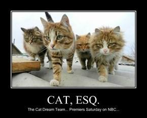 CAT, ESQ.
