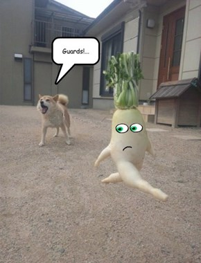 The Great Vegetable Escape