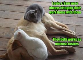Louie & Sam were always bringing their work home with them