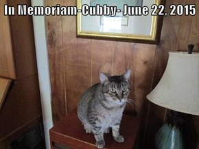 In Memoriam-Cubby- June 22, 2015