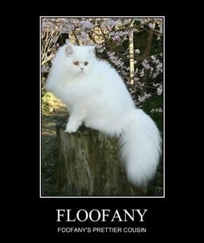 FLOOFANY