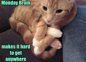 Monday Brain        makes it hard to get anywhere