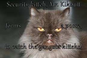 Security kitteh, Mr. Kikbutt  forms                       a posse,  to catch the gangsta kittehs!