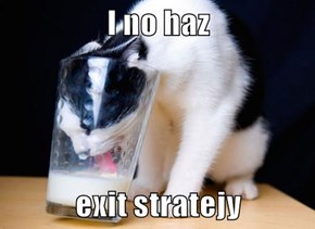 I no haz  exit stratejy