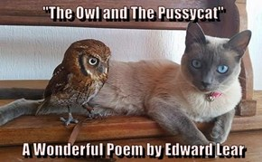 """The Owl and The Pussycat""    A Wonderful Poem by Edward Lear"