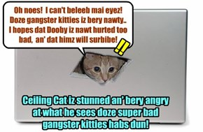As Ceiling Cat watches teh bery nawty Alley Catster gang uneggspectedly attacks teh too lone kitties Dooby an' Nemo, Ceiling Cat iz unbeleebedly shocked!