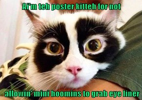 Ai'm teh poster kitteh for not   allowin' mini hoomins to grab eye liner
