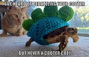 I'VE HEARD OF BEDAZZLING YOUR COOTER  BUT NEVER A COOTER COZY