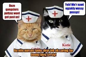 Nite Nurses at Kamp KuppyKakes Rehab Center