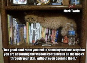 Mark Twain on books