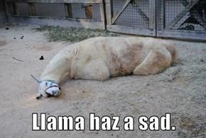 Llama haz a sad.