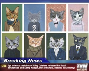 Breaking News - Eye witness sketches of Alley Catsters releesed bai local awthorities and Kamp KuppyKakes offishuls. Detales at Elebenty!