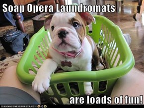 Soap Opera Laundromats  are loads of fun!