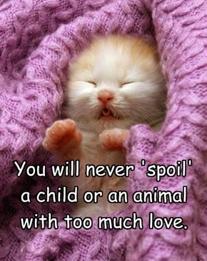 You will never 'spoil' a child or an animal with too much love.