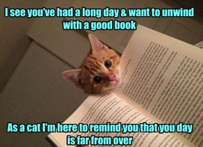 I see you've had a long day & want to unwind with a good book