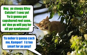 KAMP 2015: From her lookowt post hi in a tall tree, Tiny Tina catches site ob teh Alley Catster gang leeder on teh run an' yells at hims!