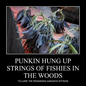PUNKIN HUNG UP STRINGS OF FISHIES IN THE WOODS