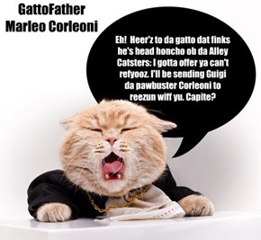 Da GattoFather calls fur Head Honcho ob Alley Catsters!