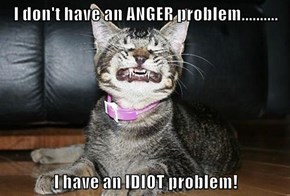 I don't have an ANGER problem..........  I have an IDIOT problem!