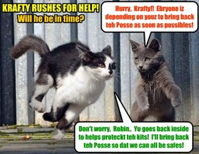 "KAMP 2015: Wiff danjer at Kamp KuppyKakes at a fever pitch becaus ob Alley Catster gang leeder Tommy (""Meatball"") Pawsketti on teh prowl, Krafty rushes to bring back Sekurity Kitteh Mr. Kikbutt an' teh Posse!"