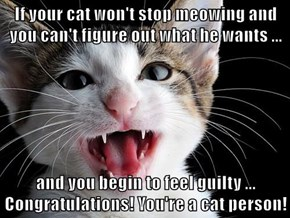 If your cat won't stop meowing and you can't figure out what he wants ...  and you begin to feel guilty ... Congratulations! You're a cat person!