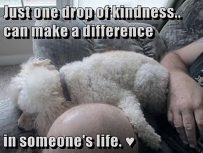 Just one drop of kindness.. can make a difference  in someone's life. ♥