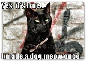 Yes, it's true...  I made a dog meow once