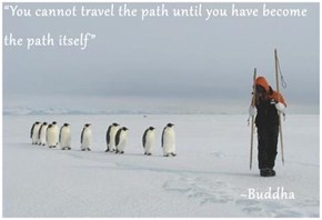 """""""You cannot travel the path until you have become the path itself""""                                                          ~Buddha"""