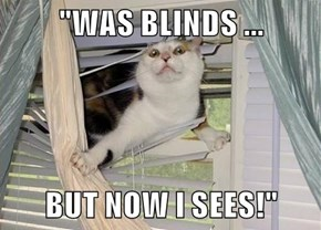 """WAS BLINDS ...  BUT NOW I SEES!"""