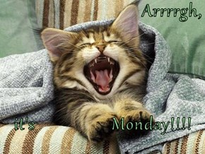 Arrrrgh,  it's                 Monday!!!!