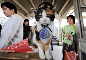 Farewell, Station Master Tama