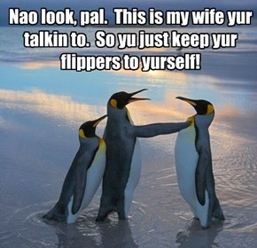 Nao look, pal.  This is my wife yur talkin to.  So yu just keep yur flippers to yurself!
