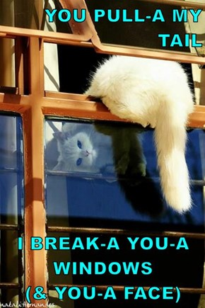 YOU PULL-A MY TAIL  I BREAK-A YOU-A WINDOWS                     (& YOU-A FACE)