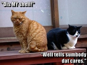 """Dis MY shelf!""  ""Well tells sumbody                                                   dat cares."""