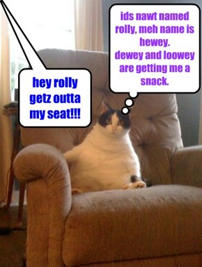 hey rolly getz outta my seat!!!