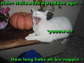 Huh?! Hulloween awreddae agin??                                       *yaaawwn* How long habz ah bin nappin..?