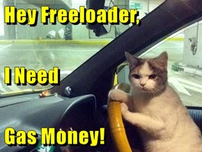 Hey Freeloader, I Need  Gas Money!