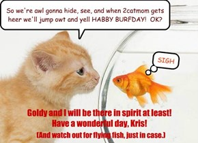So we're awl gonna hide, see, and when 2catmom gets heer we'll jump owt and yell HABBY BURFDAY!  OK?