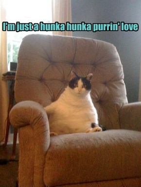 I'm just a hunka hunka purrin' love