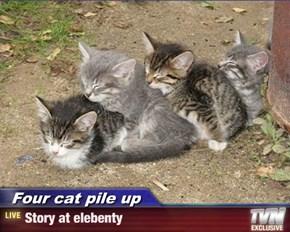 Four cat pile up - Story at elebenty