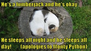 He's a lumberjack and he's okay  He sleeps all night and he sleeps all day!         (apologies to Monty Python)