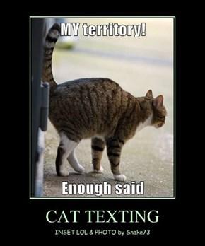CAT TEXTING