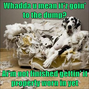 Whadda u mean it'z goin' to the dump?  Ai'm not finished gettin' it properly worn in yet