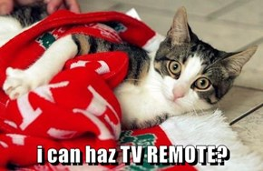 i can haz TV REMOTE?