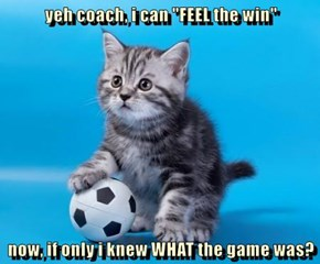 """yeh coach, i can """"FEEL the win""""  now, if only i knew WHAT the game was?"""