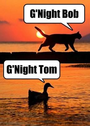 G'Night Everybody