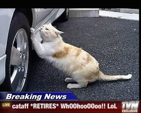 Breaking News - cataff *RETIRES* WhOOhooOOoo!! LoL